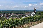 Germany, Baden-Wuerttemberg, Markgraefler Land, wine village Istein, overview