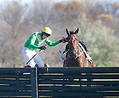 Darren Nagle and Fieldview part company when the horse says no at last jump in Foxhunter's Chase at Unionville. Bruised but unbowed, Nagle came back on the card to win the Pennsylvania Hunt Cup later in the afternoon.