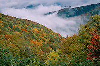 Breaking storm from Balsam Mountain Road<br /> Great Smoky Mountains National Park<br /> North Carolina