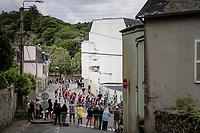 peloton rolling through Châteaulin<br /> <br /> Stage 1 from Brest to Landerneau (198km)<br /> 108th Tour de France 2021 (2.UWT)<br /> <br /> ©kramon