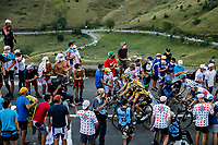 Wout van Aert (BEL/Jumbo-Visma) and George Bennett (AUS/Jumbo-Visma) up the Col de Peyresourde<br /> <br /> Stage 8 from Cazères-sur-Garonne to Loudenvielle 141km<br /> 107th Tour de France 2020 (2.UWT)<br /> (the 'postponed edition' held in september)<br /> ©kramon
