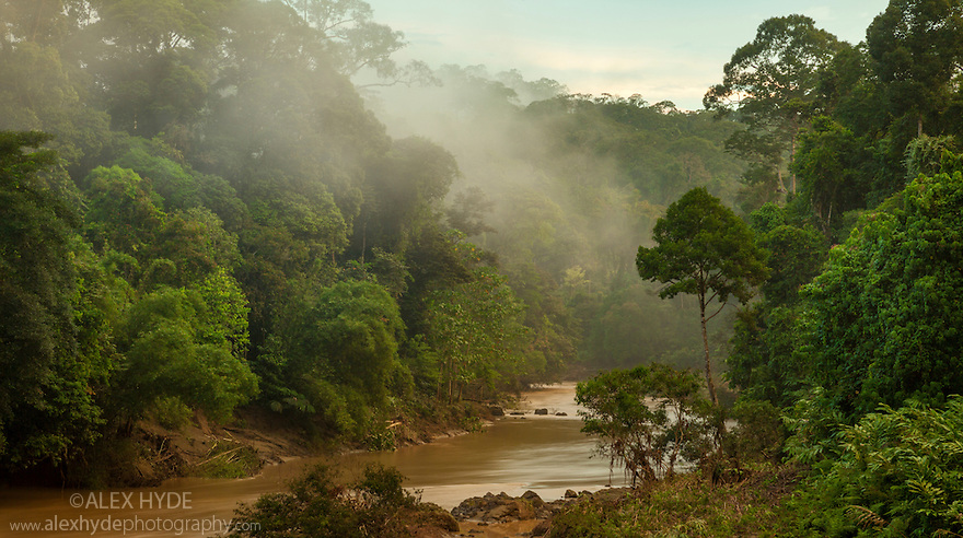 Segama River surrounded by dense dipterocarp rainforest, Danum Valley, Sabah, Borneo.