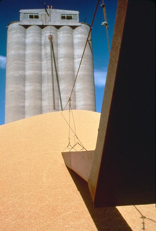 Wheat; Grain Harvest; grain elevator, surplus grain on the ground from good harvest; eastern Washington State; Columbia Basin; Washington State; Pacific Northwest;.
