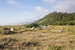 California, Prairie Creek Redwoods State Park, beach campground,  Humboldt County, California, USA, Wilderness coast, Pacific Ocean,