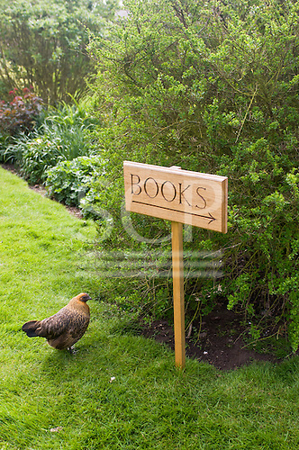 """Orford, Suffolk; sign saying """"books"""" and chicken at the charity book shop in Orford."""