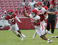 Arkansas running back Dominique Johnson (right) carries the ball Saturday, April 3, 2021, as linebacker Deon Edwards (22) pursues during a scrimmage at Razorback Stadium in Fayetteville. Visit nwaonline.com/210404Daily/ for today's photo gallery. <br /> (NWA Democrat-Gazette/Andy Shupe)