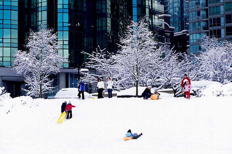 """Vancouver, BC, British Columbia, Canada - Children and Parents playing and sledding on Hill, Kids tobogganing in Downtown """"West End"""" after Winter Snow Storm"""