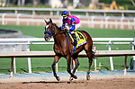 September 26, 2020:  Mucho Unusual with Juan Hernandez aboard wins the Rodeo Drive Stakes at Santa Anita Park, in Arcadia, California on September 26, 2020.  Evers/Eclipse Sportswire/CSM