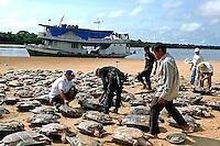 """Durante aÁ""""o  FudaÁ""""o de Meio Ambiente CiÍncia e Tecnologia de Roraima - FEMACT, IBAMA e Policia Militar centenas de tartarugas que seriam comercializadas na cidade de Manaus s""""o apreendidas de traficantes de animais silvestres e soltas baixo rio Branco. <br /> 29/11/2005<br /> Foto de Jorge MacÍdo/Interfoto"""