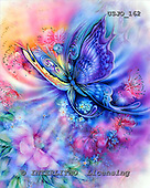 Marie, REALISTIC ANIMALS, REALISTISCHE TIERE, ANIMALES REALISTICOS, paintings+++++,USJO162,#A# ,Joan Marie , butterfly