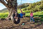 Young girls playing on the tree swing