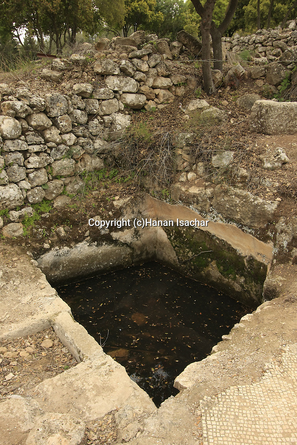 Israel, Jerusalem Mountains, An ancient wine press in Hurvat Hanut