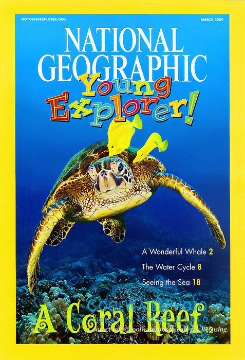 National Geographic Young Explorer Magazine, March 2009, cover use, USA, Image ID: Green-Sea-Turtle-0098