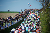 peloton over Gulpenerberg<br /> <br /> 50th Amstel Gold Race 2015