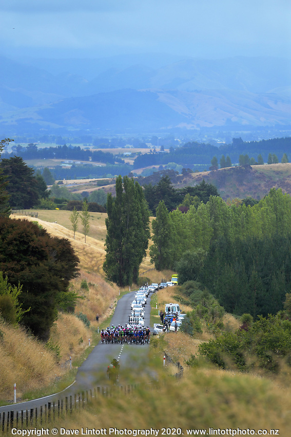 The peloton climbs Miller Road for the first KOM during stage two of the NZ Cycle Classic UCI Oceania Tour (Gladstone circuit) in Wairarapa, New Zealand on Thursday, 16 January 2020. Photo: Dave Lintott / lintottphoto.co.nz