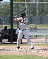 Jefferson Mendoza - 2019 AIL White Sox (Bill Mitchell)