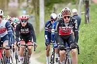 Tim Wellens (BEL/Lotto-Soudal) up the Molenberg<br /> <br /> 105th Ronde van Vlaanderen 2021 (MEN1.UWT)<br /> <br /> 1 day race from Antwerp to Oudenaarde (BEL/264km) <br /> <br /> ©kramon