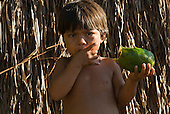 Xingu Indigenous Park, Mato Grosso State, Brazil. Aldeia Kamaiura. Boy with mamao (papaya) fruit.
