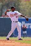 Baltimore Orioles Spring Training 2010