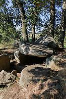 Dolme im neolithischen Gr0ßsteingräberfeld von Lancken-Granitz auf Rügen, Mecklenburg-Vorpommern, Deutschland