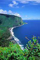 Waipio Valley and coastline. Big Island. View is from the road into the valley.