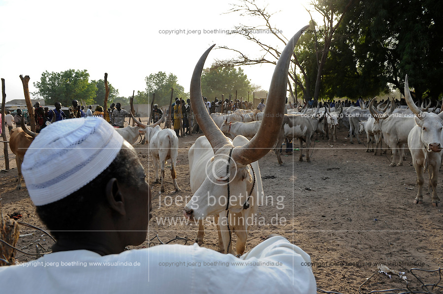 South Sudan, Rumbek, cattle market / SUEDSUDAN Rumbek , Tiermarkt