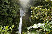 The La Paz Waterfall in the Braulio Carillo National Park, Costa Rica