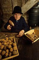 Europe/France/Midi-Pyrénées/46/Lot/Env de Martel : Moulin à huile de noix - Le dénoisillage-, Cassage  de la coque des noix pour en extraire les cerneaux<br /> PHOTO D'ARCHIVES // ARCHIVAL IMAGES<br /> FRANCE 1980