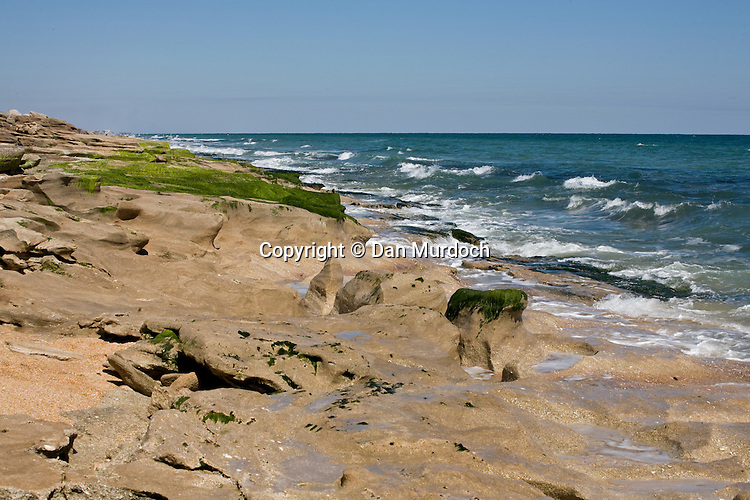 Coastal rocks in Washington Oak Park, st. Augustine, Florida