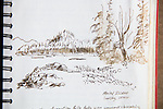 Great Bear Rainforest, ink on paper, ink sketch, Journal Art, Journal Art 2005, July 19th 2005, Milne Island