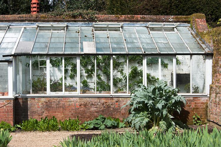 Kitchen garden greenhouse, Hinton Ampner, Hampshire, late April.