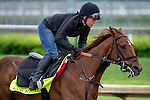 APRIL 26, 2015: Far Right, trained by Ron Moquett exercises in preparation for the 141st Kentucky Derby at Churchill Downs in Louisville, KY. Jon Durr/ESW/Cal Sport Media