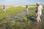Bob,  Mary & Judith On Horseshoe Crab Survey