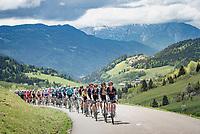 yellow jersey / GC leader Richie Porte (AUS/Ineos Grenadiers) tucked away among teammates up the Col de la Colombière (HC/1618 m/11.7km@5.8%)<br /> <br /> 73rd Critérium du Dauphiné 2021 (2.UWT)<br /> Stage 8 (Final) from La Léchère-Les-Bains to Les Gets (147km)<br /> <br /> ©kramon