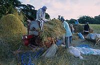 PHILIPPINES Palawan, farmer thresh paddy rice with threshing machine / Philippinen Palawan, Bauern dreschen Reis mit Dreschmaschine
