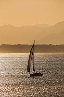 Sailboat at Sea