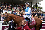 October 01, 2017, Chantilly, FRANCE - Plumatic with Maxime Guyon up at parade for the Prix de l'Arc de Triomphe (Gr. I) at Chantilly Race Course  [Copyright (c) Sandra Scherning/Eclipse Sportswire)]