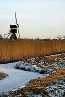 Molentje in de winter, Alblasserwaard