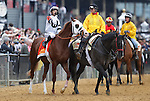 May 18, 2013, Will Take Charge, Mike Smith up, takes part in the post parade before the 138th Preakness Stakes. Will Take Charge was one of three horses in the nine-horse field trained by D. Wayne Lukas. Oxbow (#6), Gary Stevens up, wins the 138th Preakness Stakes at Pimlico Race Course in Baltimore, MD.   (Joan Fairman Kanes/Eclipse Sportswire)