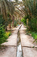 Merzouga, Morocco.  Irrigation Canal Carries Water to Farmers' Plots in the Merzouga Oasis.