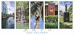 WS042 Images of Suva, Fiji Islands