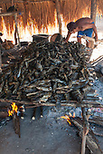 Xingu Indigenous Park, Mato Grosso, Brazil. Aldeia Matipu. Smoking fish for the Kuarup festival.