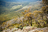 Image Ref: YR134<br /> Location: Cathedral Range State Park<br /> Date: 02.11.15