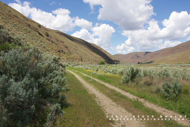 An old ranch road in the John Day River valley, Oregon.