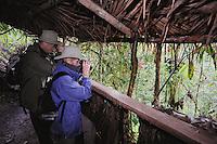 Birders in blind looking for Andean Cock-of-the-rock (Rupicola peruviana) at Paz de las aves, Paz de las aves, Mindo, Ecuador, Andes, South America