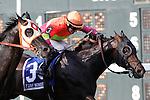 September 1, 2014:  Sharp Sensation (#3), David Moran up, holds off a hard-charging Ben's Cat (left) to win the grade 3 Turf Monster at Parx Racing in Bensalem, PA. Trainer is Reade Baker. Owners are Jim and Susan Hill. ©Joan Fairman Kanes/ESW/CSM
