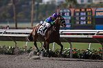 AUG 8,2014:Racing for Chasen,ridden by Stewart Elliott,wins the maiden race,1R at Del Mar in Del Mar,CA. Kazushi Ishida/ESW/CSM