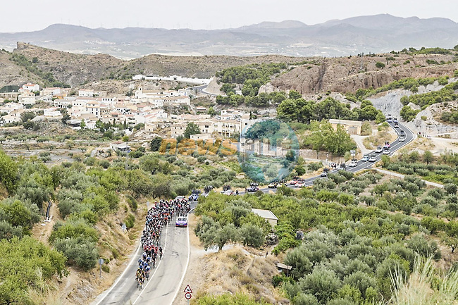 The peloton during Stage 9 of La Vuelta d'Espana 2021, running 188km from Puerto Lumbreras to Alto de Velefique, Spain. 22nd August 2021.    <br /> Picture: Unipublic/Charly Lopez | Cyclefile<br /> <br /> All photos usage must carry mandatory copyright credit (© Cyclefile | Charly Lopez/Unipuplic)