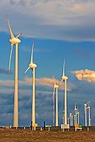 Usina de energia eolica Parque Eolico da Pedra do Sal em Ilha Grande de Santa Isabel. Piaui. 2014. Foto de Candido Neto.