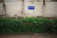 """Nigeria. Enugu State. Enugu. Town center. A no peeing sign on the wall with the words: """" Urinating here is at your own risk"""". Green bushes and red flowers. Enugu is the capital of Enugu State, located in southeastern Nigeria. 8.07.19 © 2019 Didier Ruef"""